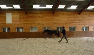 Débourrage du cheval - Pensions - 3 Sources - Alix Bourtourault - Ecuries des 3 Sources - Sancoins - Nevers - Bourges - Moulins