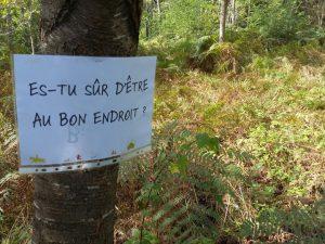 Ferme pédagogique - Forêt pédagogique - Ferme des 3 Sources - Sancoins - Nevers - Bourges - Moulins